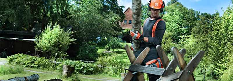 Electric Chainsaw Buying Guide