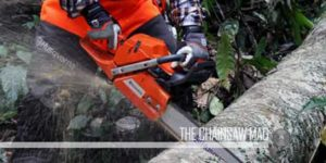 best-battery-chainsaw-featured