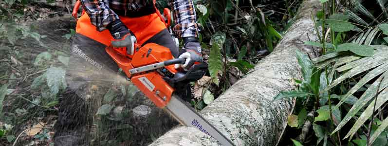 best-cordless-chainsaw