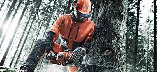 gas-powered-chainsaw-buying-guide